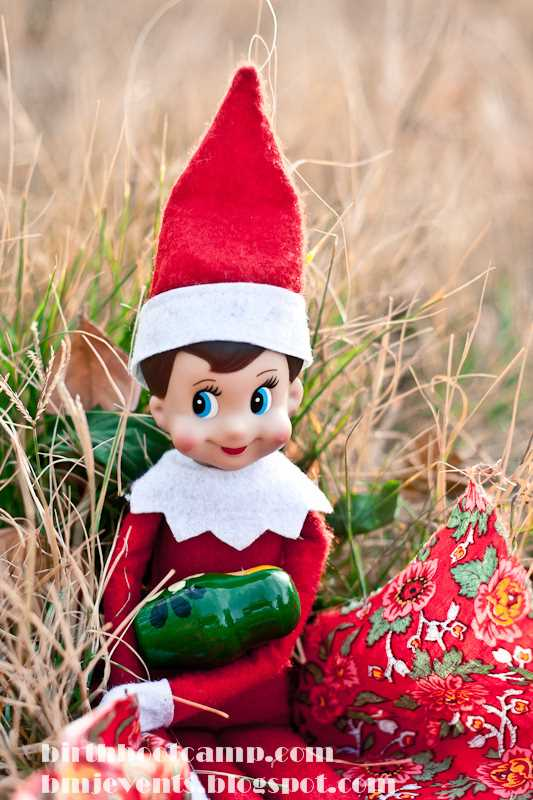 Elf On The Shelf Nursing Photos Birth Boot Camp 174 Amazing