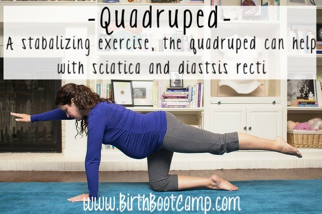 quadruped- exercises for a great pregnancy and birth