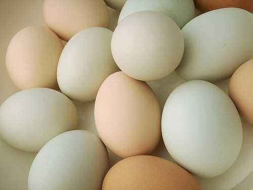 Eggs are packed with nutrients necessary during pregnancy