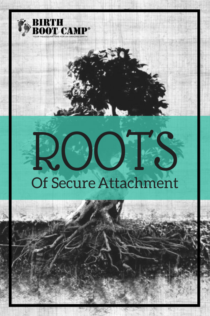roots of secure attachment